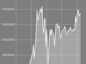 【仮想通貨保有内訳】700万円から1200万円を乱高下する激しい週