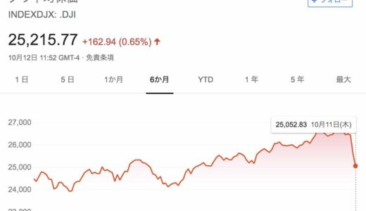 NYダウ急落により国際分散投資のウェルスナビ・THEOはどうなったか?
