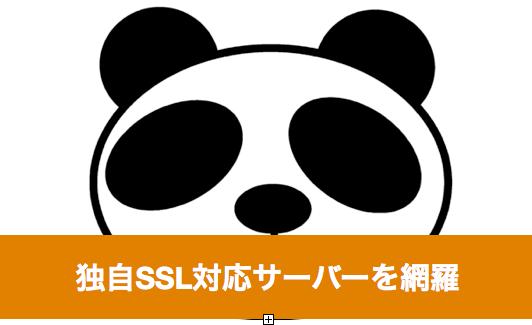 無料で独自SSL対応のレンタルサーバー7社を紹介(独自ドメインでWordPress利用可能)