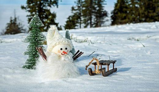 サラリーマンよブログを書け!雪だるま式に報酬とスキルを膨らませよ!